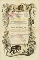 Aktie der Societe Royale de Zoologie d'Anvers